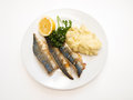 Fried mackerel on white plate with mashed potatoes half a lemon and parsley towards white Stock Image