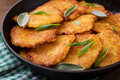 Fried potato pancakes in a frying pan Royalty Free Stock Photo