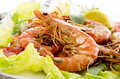 Fried prawns with salad as closeup on a white plate Stock Photos