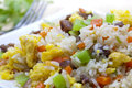 Fried rice a shot of asian Stock Photography