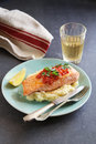 Fried salmon steak with mashed potatoes Royalty Free Stock Photo