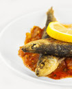 Fried sardines Stock Image
