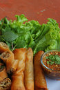 Fried spring roll pastry. Royalty Free Stock Photography