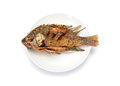 Fried Tilapia fish fried on plate Royalty Free Stock Photo