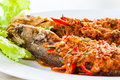 Fried whisker sheat fish with chili sauce close up or on on white dish thai food Royalty Free Stock Images
