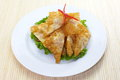 Fried wonton asian style food appetizer deep Stock Photography