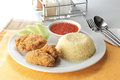 Friend chicken rice Royalty Free Stock Photo
