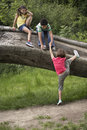 Friends climbing on fallen tree full length of three Royalty Free Stock Image