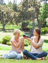 Friends clink glasses of wine in the park Royalty Free Stock Photos