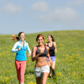 Friends enjoy running through sunny meadow smiling Royalty Free Stock Image