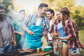 Friends having a barbecue party in nature Royalty Free Stock Photo