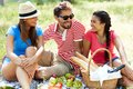 Friends on picnic happy young having in the country Royalty Free Stock Image