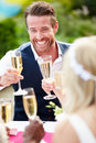 Friends proposing champagne toast at wedding close up of smiling Royalty Free Stock Photo