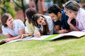 Friends studying outdoors Royalty Free Stock Photo