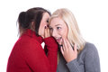 Friendship two girlfriends have fun together smiling and spe speak about secrets isolated in winter clothes Royalty Free Stock Photos