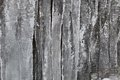 Fringe of ice on a rock wall Royalty Free Stock Image