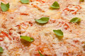 Frische Pizza Stockbild