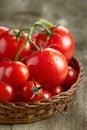 Frische rote tomaten Lizenzfreies Stockfoto