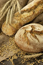 Frisches gebackenes traditionelles Brot Stockfoto