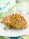Fritted vegetable pancakes plate selective focus Stock Image