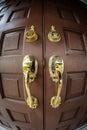 Främre trä för dörr Royaltyfri Fotografi