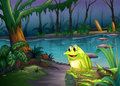 A frog above a trunk with algae illustration of Royalty Free Stock Image