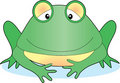 Frog alone Stock Images