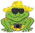 Frog as a tourist with camera sunglasses and straw hat vector illustration of Stock Photos