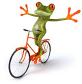 Frog with a bicycle Royalty Free Stock Image