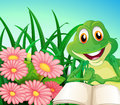 A frog with a book at the garden illustration of Stock Image