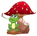 A frog catching a fly near the giant mushroom illustration of on white background Stock Images