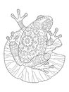 Frog coloring book vector illustration Royalty Free Stock Photo