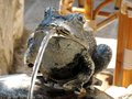 Frog fountain on summer day spiting water in a plaza in budva montenegro photo taken Stock Image