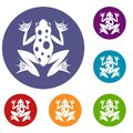 Frog icons set