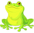 Frog illustration of cute green Stock Image