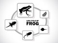 Frog life cycle image graphic style of on white background Royalty Free Stock Photos