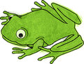 Frog little green cartoon with a smile Royalty Free Stock Images