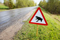 Frog migration on road traffic sign attents for Royalty Free Stock Photos