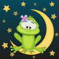 Frog on the moon