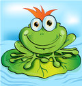 Frog prince funny cartoon design vetcor Stock Photos
