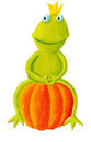 Frog prince sitting on pumpkin acrylic illustration of Stock Images