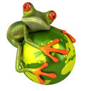 Frog protecting the earth Royalty Free Stock Photography