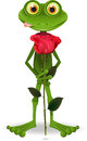 Frog with rose Stock Image