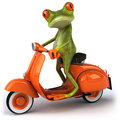 Frog in scooter Royalty Free Stock Images