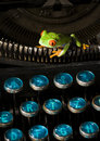 Frog on the typewriter Royalty Free Stock Photo
