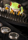 Frog on the typewriter Royalty Free Stock Image