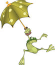 Frog with an umbrella Royalty Free Stock Images