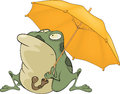Frog with an umbrella. Cartoon Stock Photos