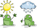 Frog Weather Stock Photo
