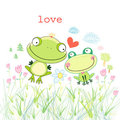 Frogs in love Royalty Free Stock Image
